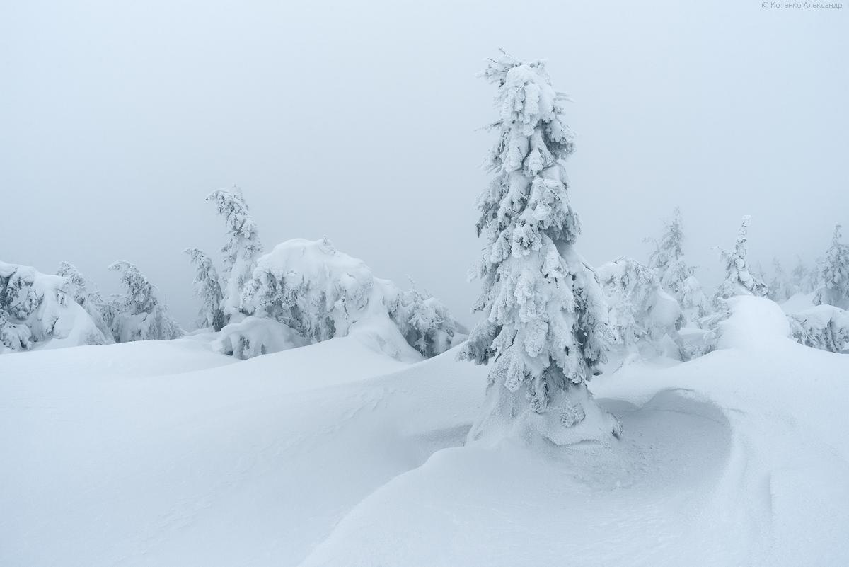 Fabulous winter 05
