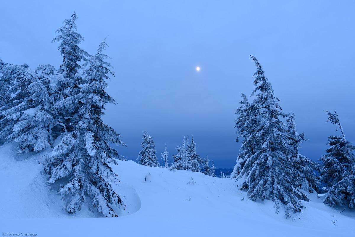 Fabulous winter 10