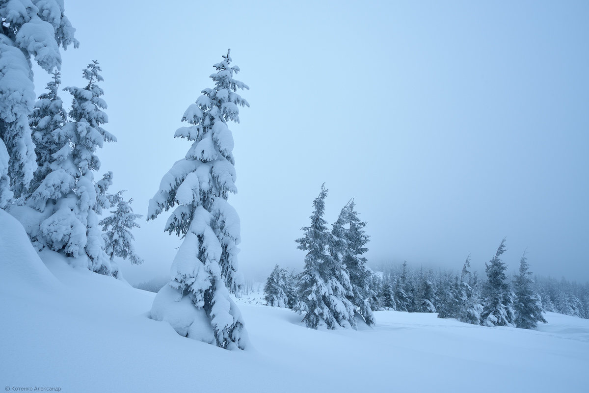 Fabulous winter 12