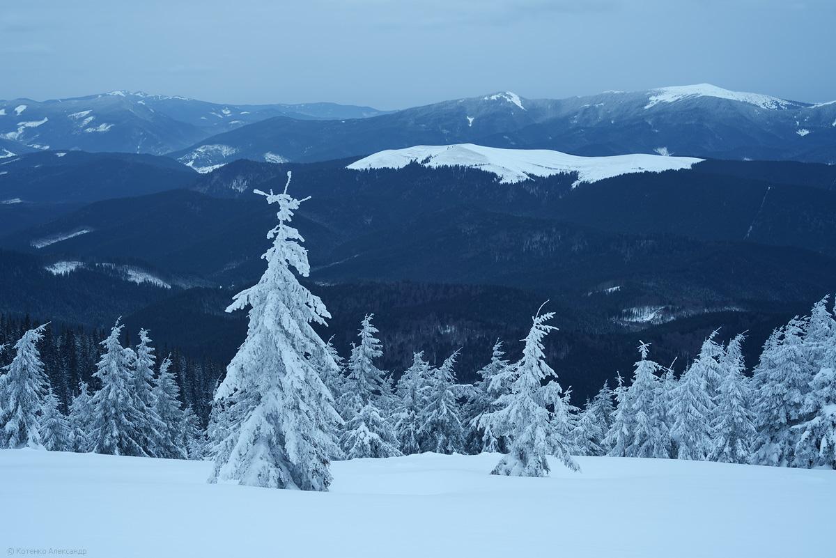 Fabulous winter 13
