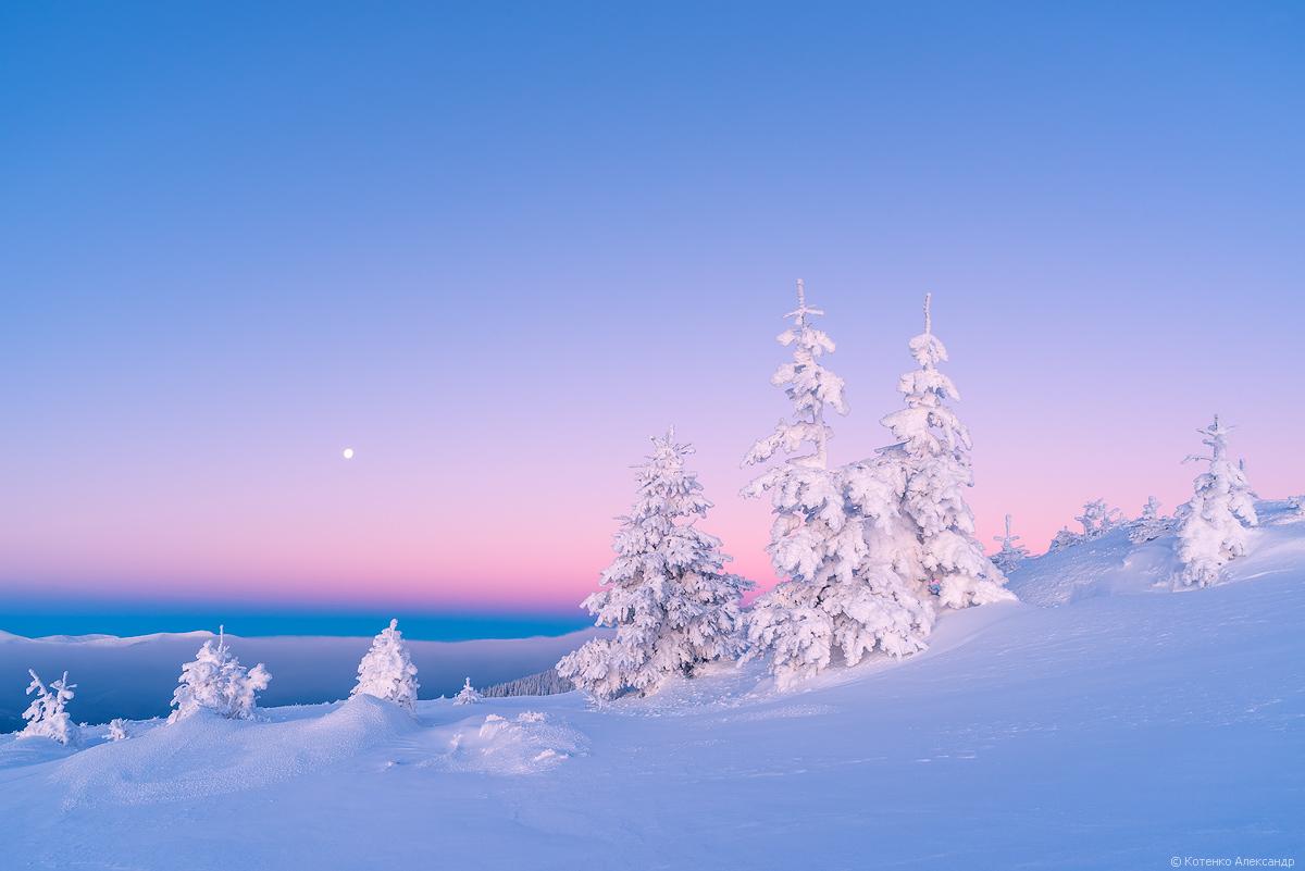 Fabulous winter 16