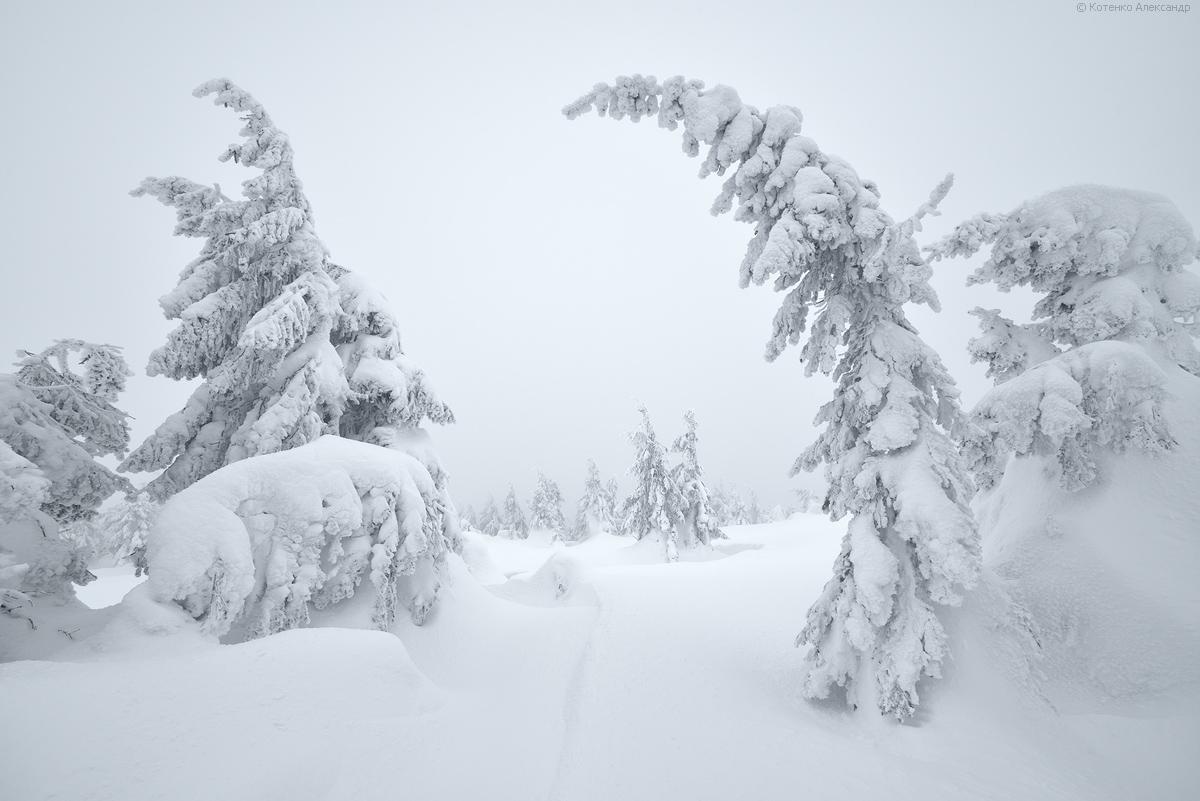 Fabulous winter 20