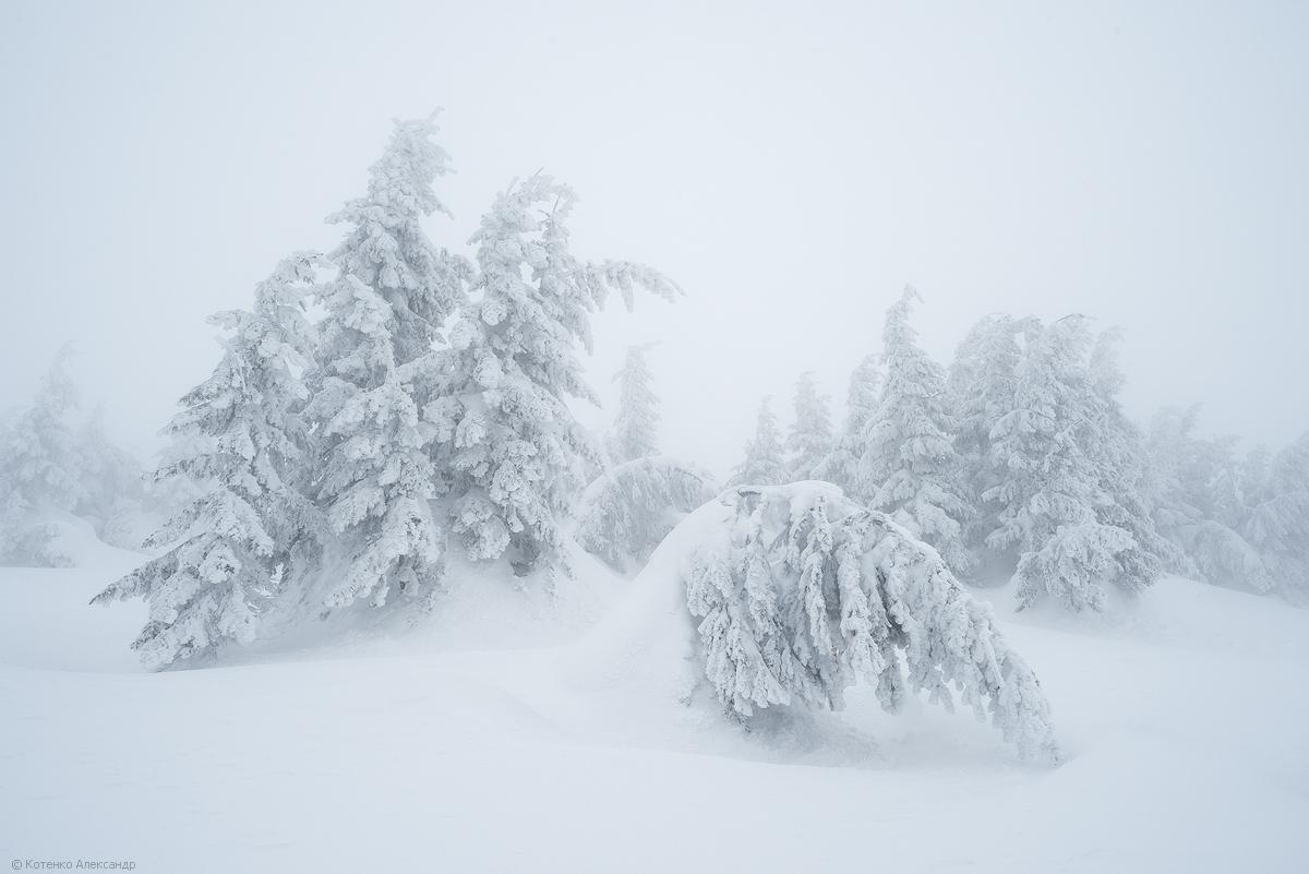 Fabulous winter 21