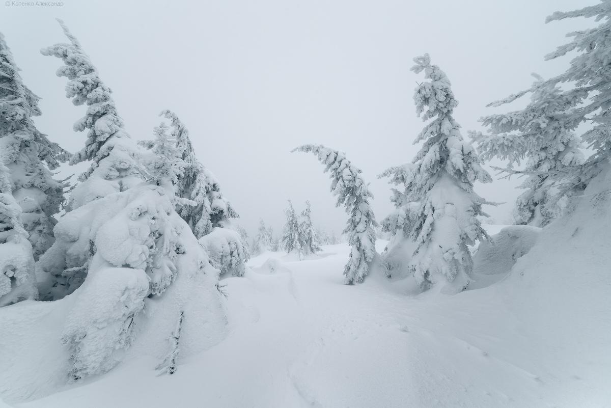 Fabulous winter 22