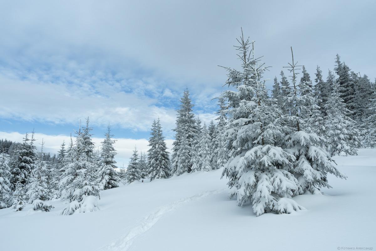 Fabulous winter 25