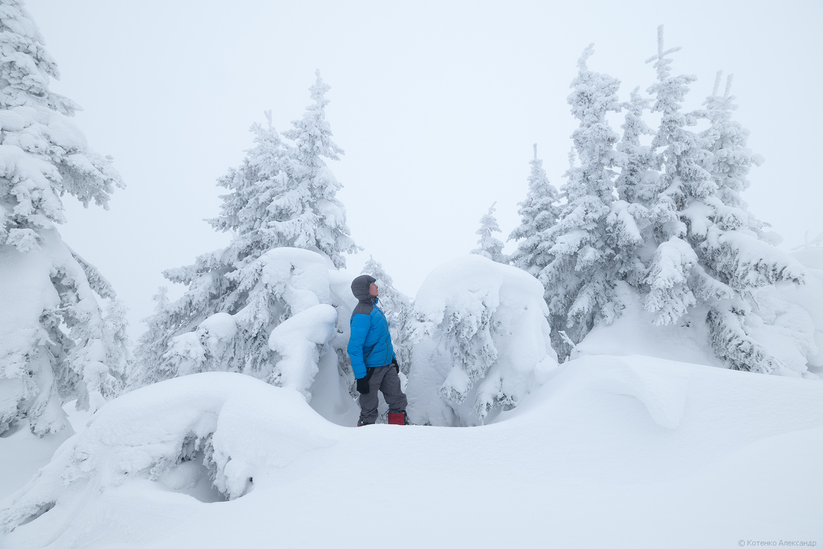 Fabulous winter 26