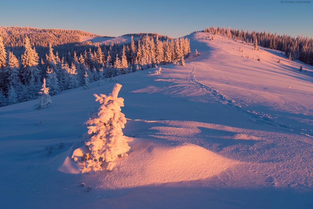 Fabulous winter 30