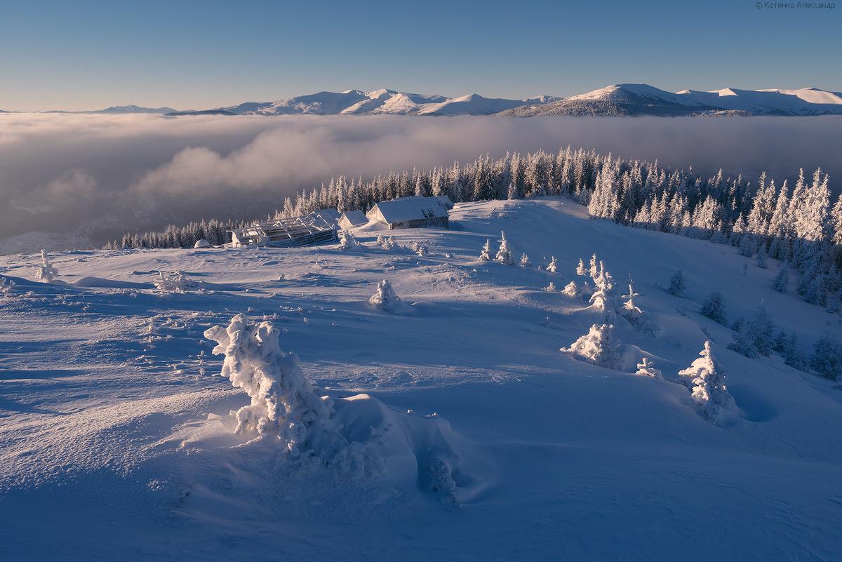 Fabulous winter 35