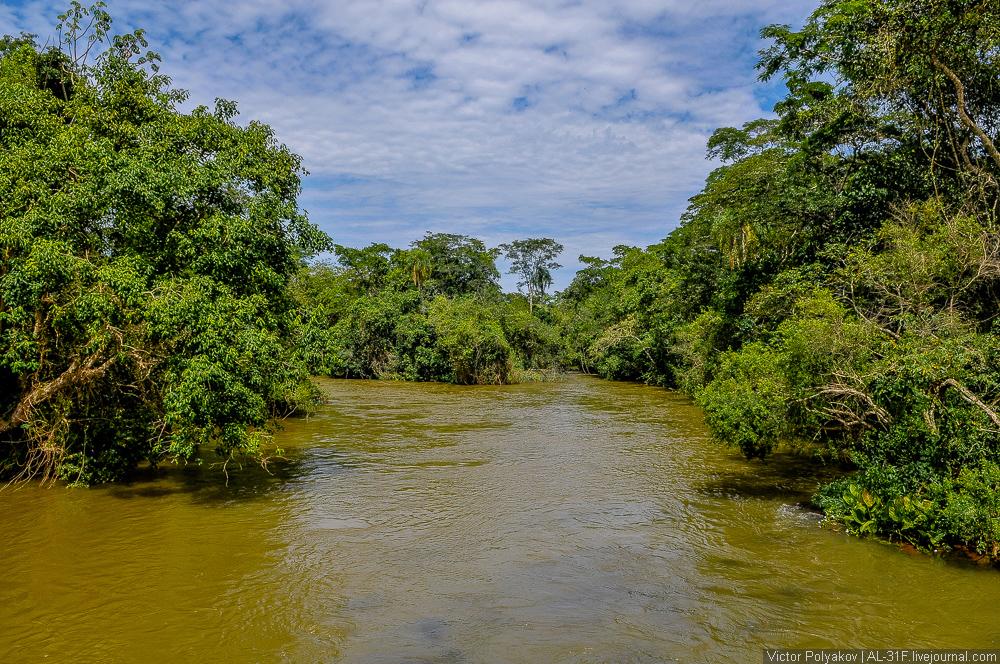 Iguazu Falls 07