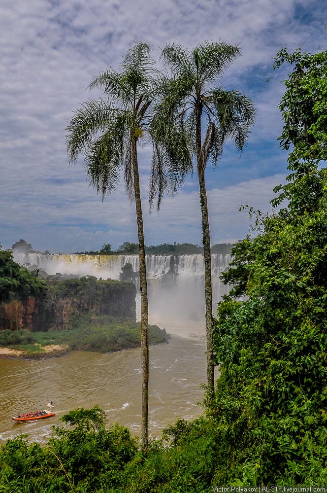 Iguazu Falls 13