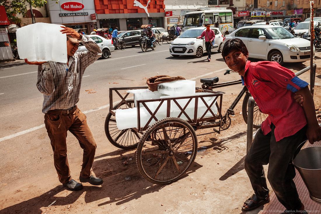 Jaipur 29