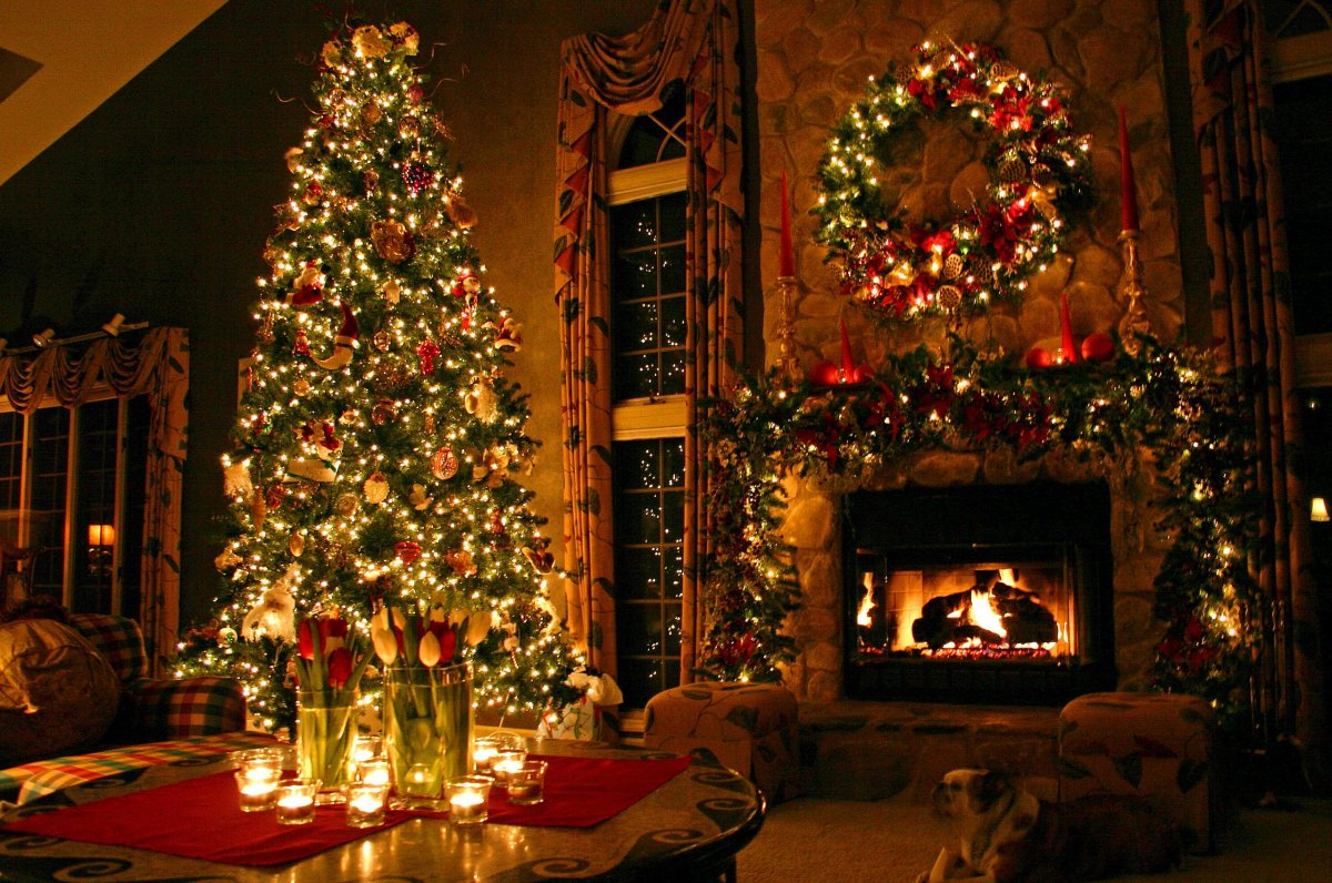 New year images with Christmas trees and fireplaces 03