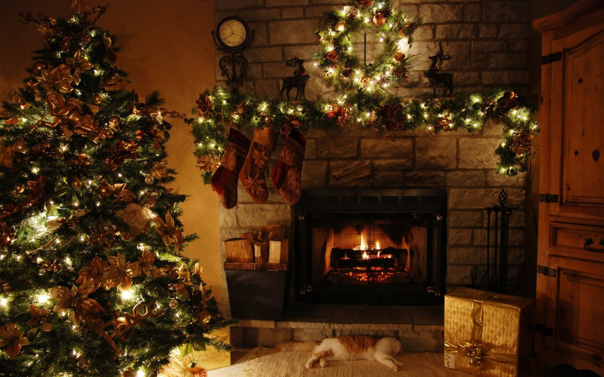 New year images with Christmas trees and fireplaces 13