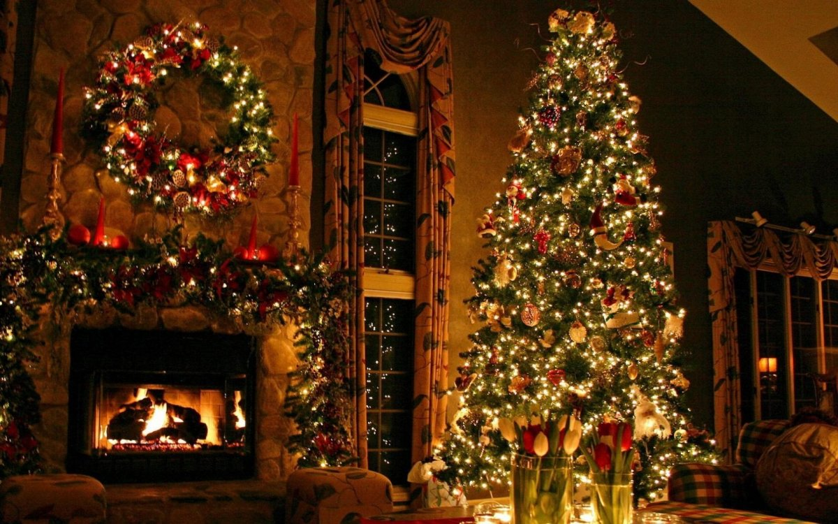 New year images with Christmas trees and fireplaces 15