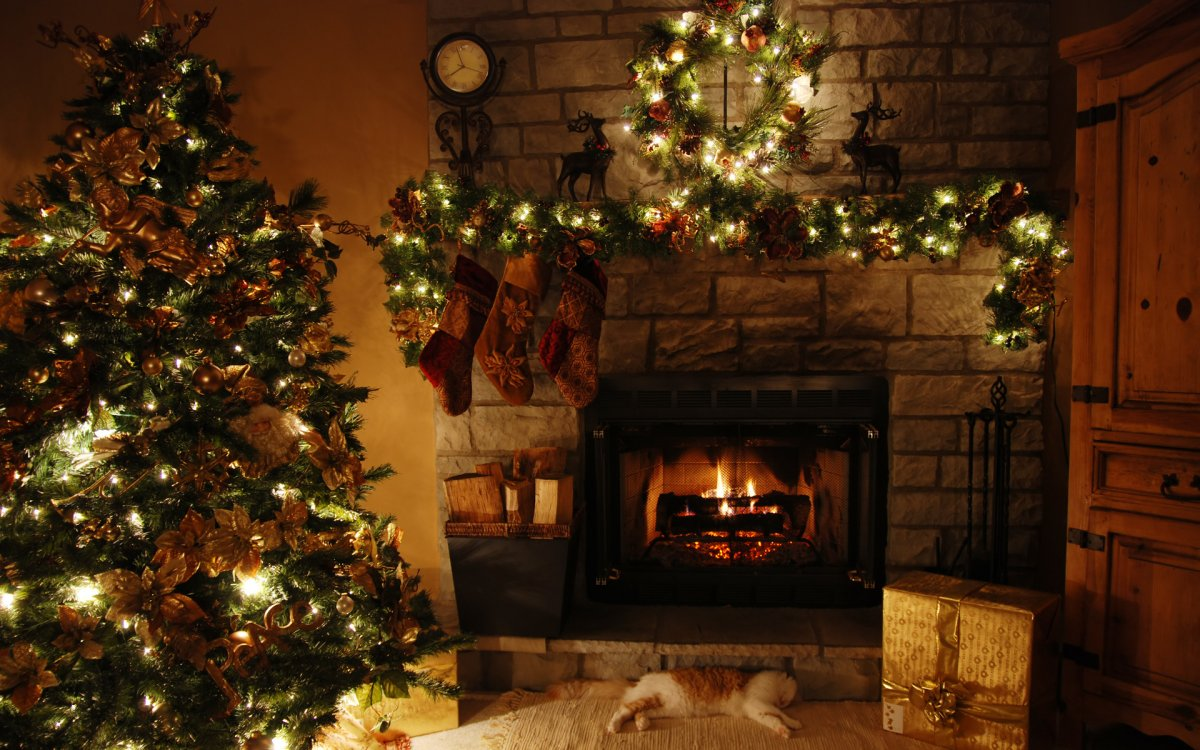 New year images with Christmas trees and fireplaces 17