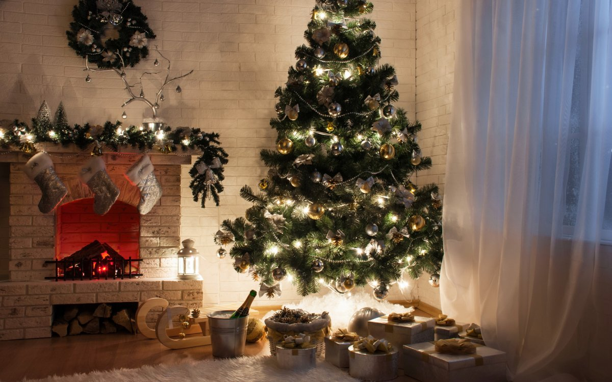 New year images with Christmas trees and fireplaces 22
