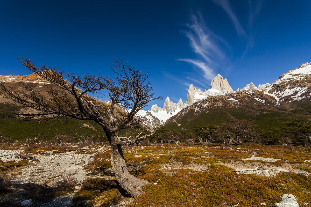 Patagonia. Laguna de Los Tres 08