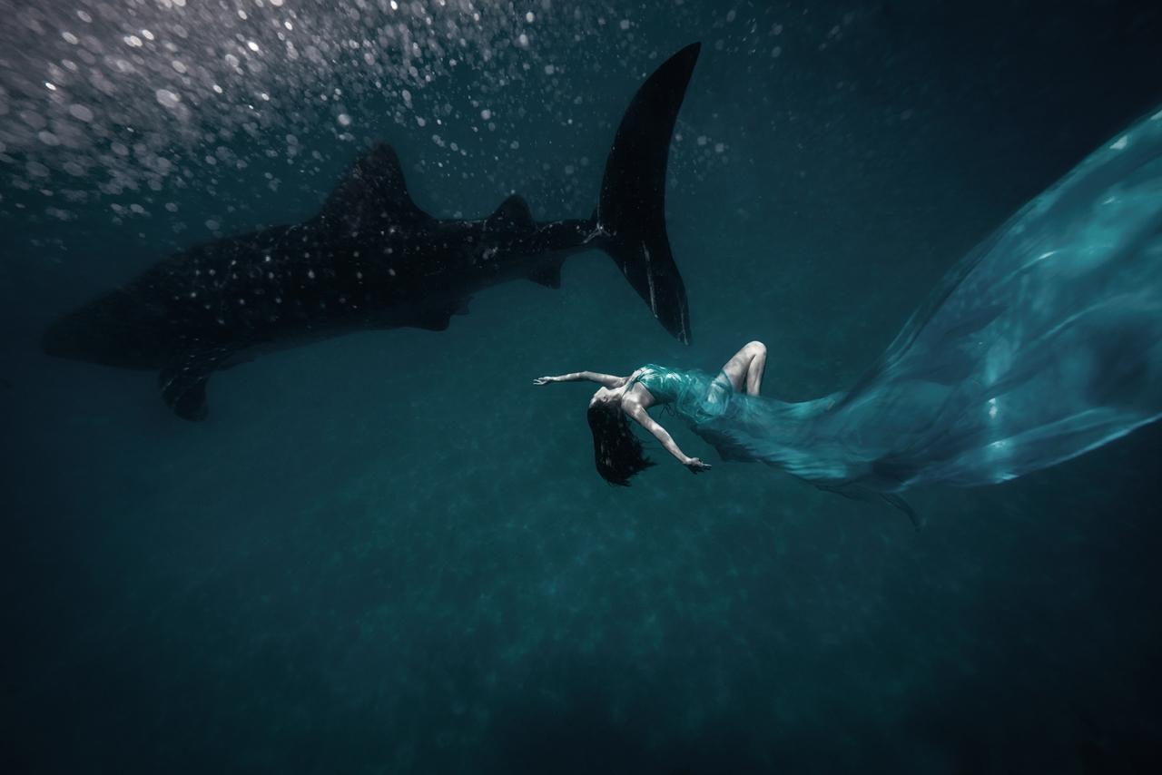 Photoshoot with endangered animals 04