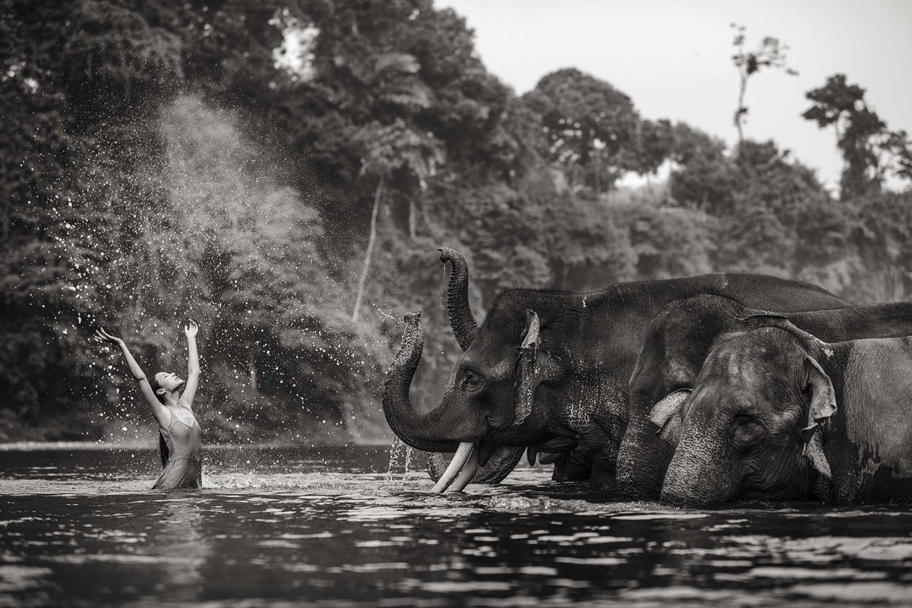 Photoshoot with endangered animals 05