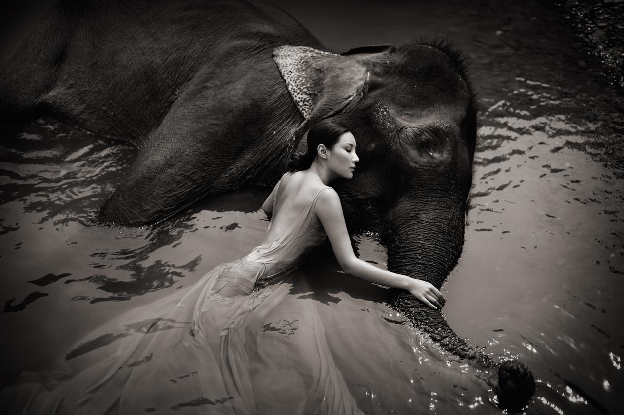 Photoshoot with endangered animals 11