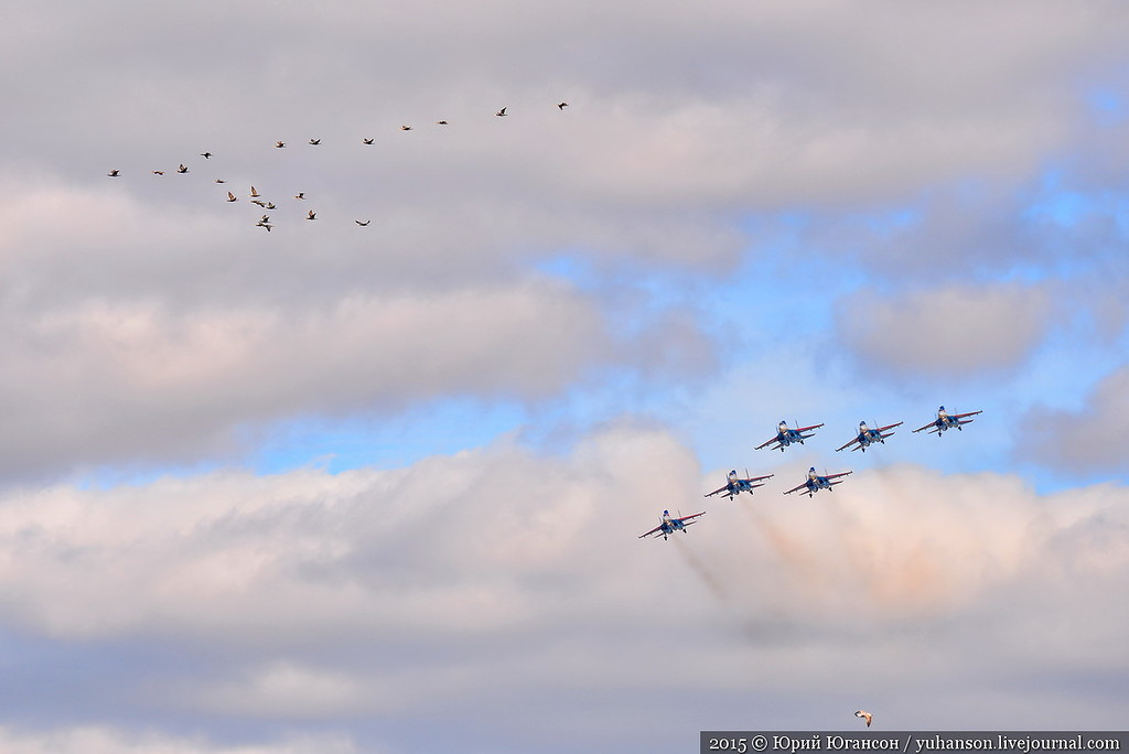Russian Knights in Sevastopol 10