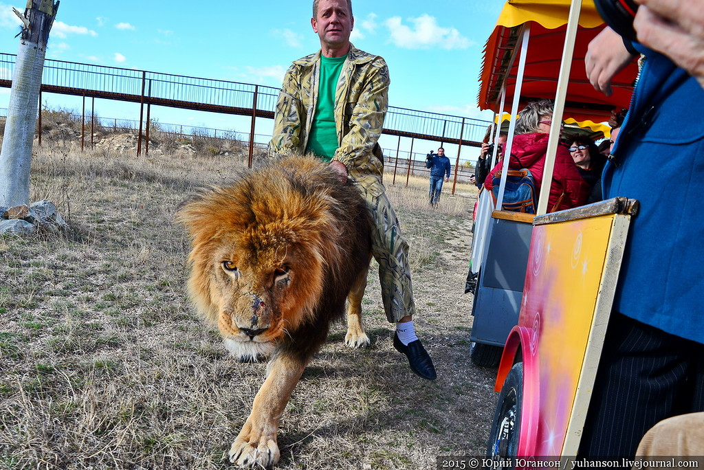 Safari Park Taigan in Crimea 08