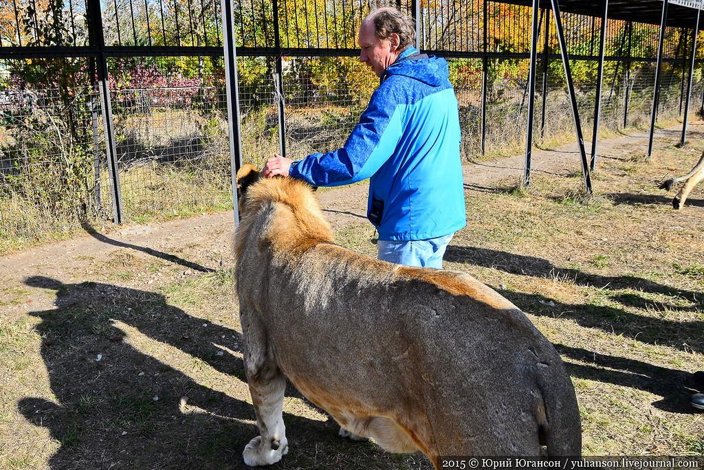 Safari Park Taigan in Crimea 13