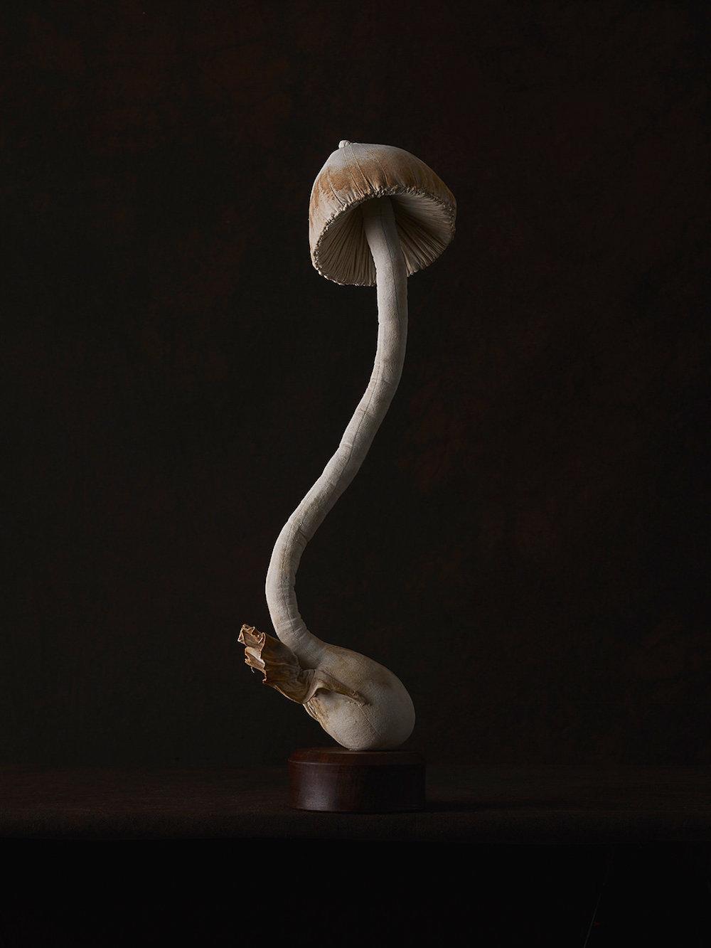 Sculptures of mushrooms toadstools, created from vintage fabrics 07