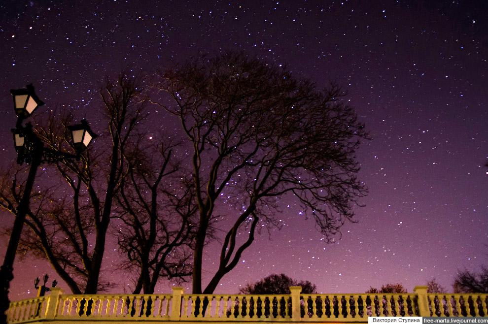 Stars over the Sevastopol 19