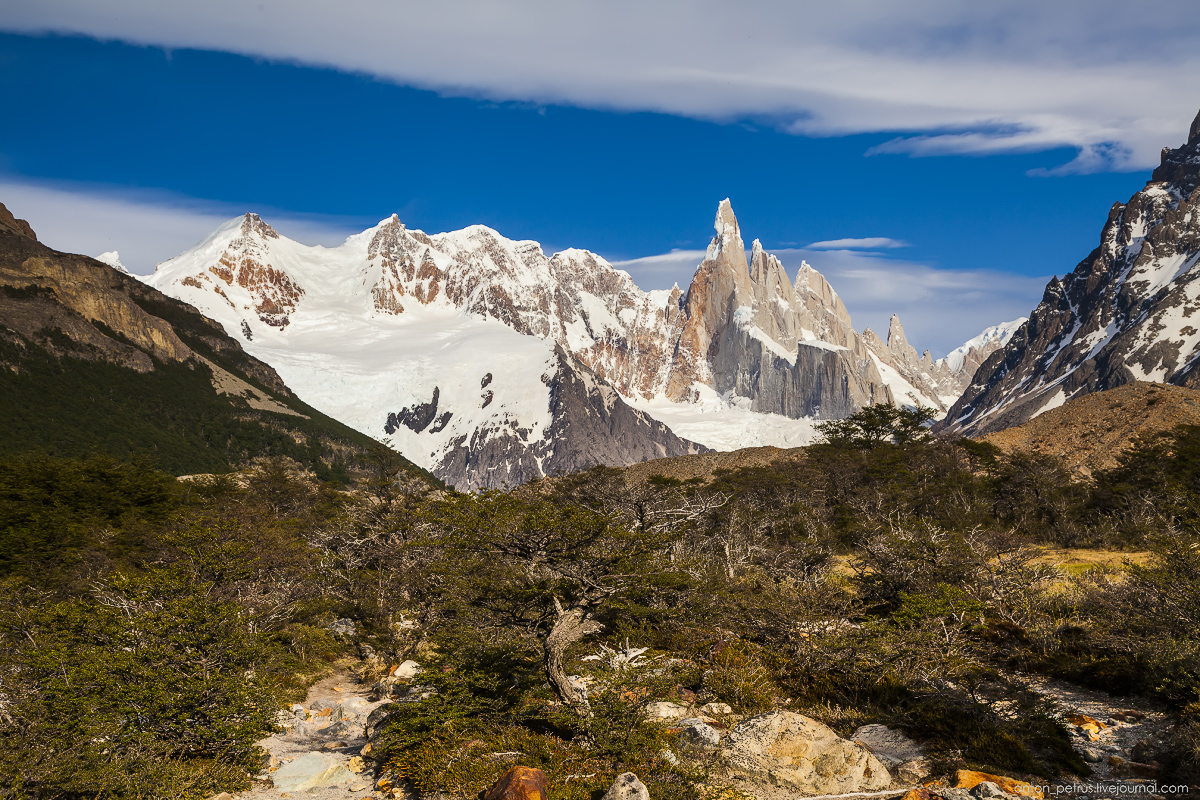 The Cerro Torre. Top-needle 14
