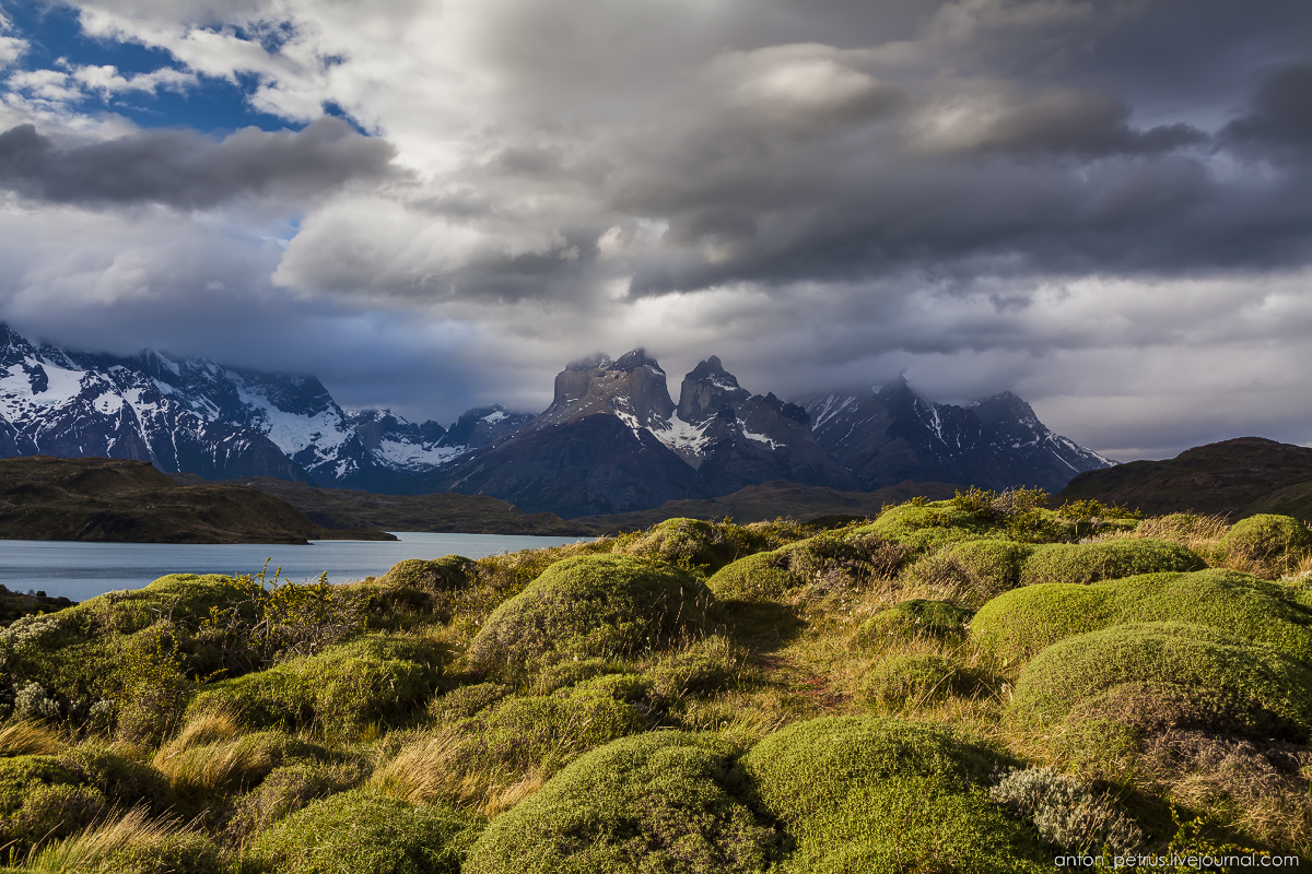The Chilean Patagonia. Torres del Paine 05