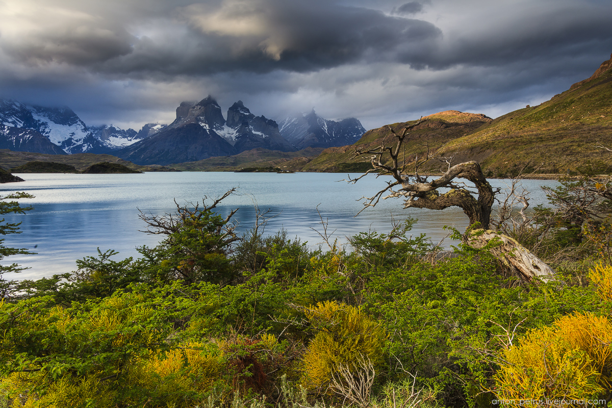 The Chilean Patagonia. Torres del Paine 08