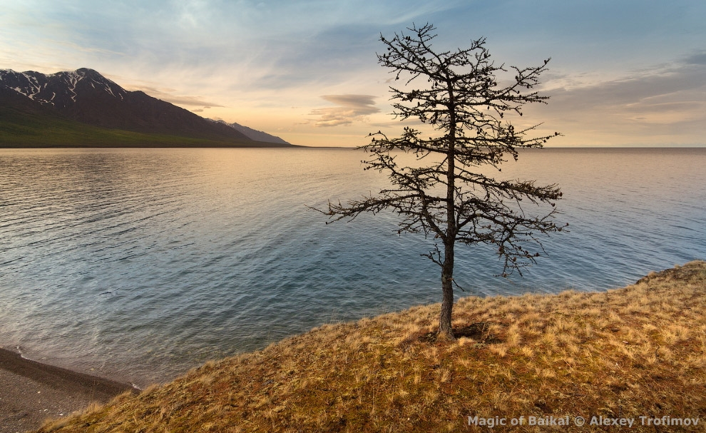 The Magic Of Lake Baikal. Virtual photo exhibition 58