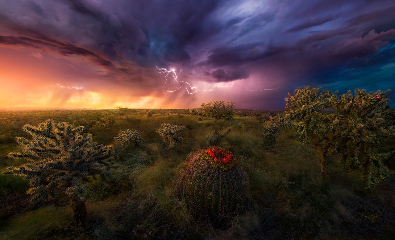 The enchanting scenery of nature in the photographs of Marc Adamus 04