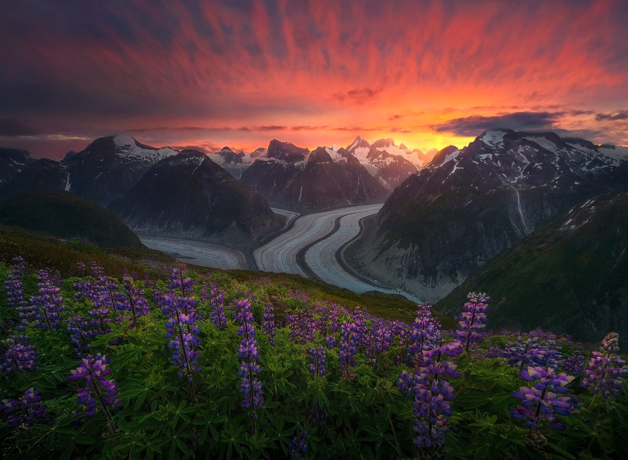 The enchanting scenery of nature in the photographs of Marc Adamus 07