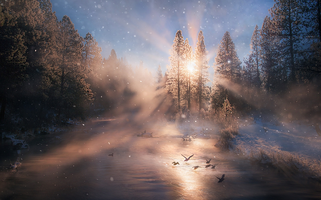 The enchanting scenery of nature in the photographs of Marc Adamus 09