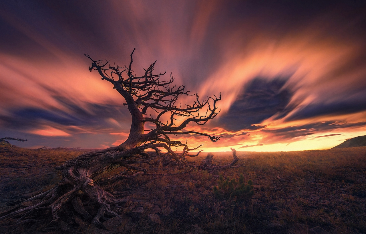 The enchanting scenery of nature in the photographs of Marc Adamus 12