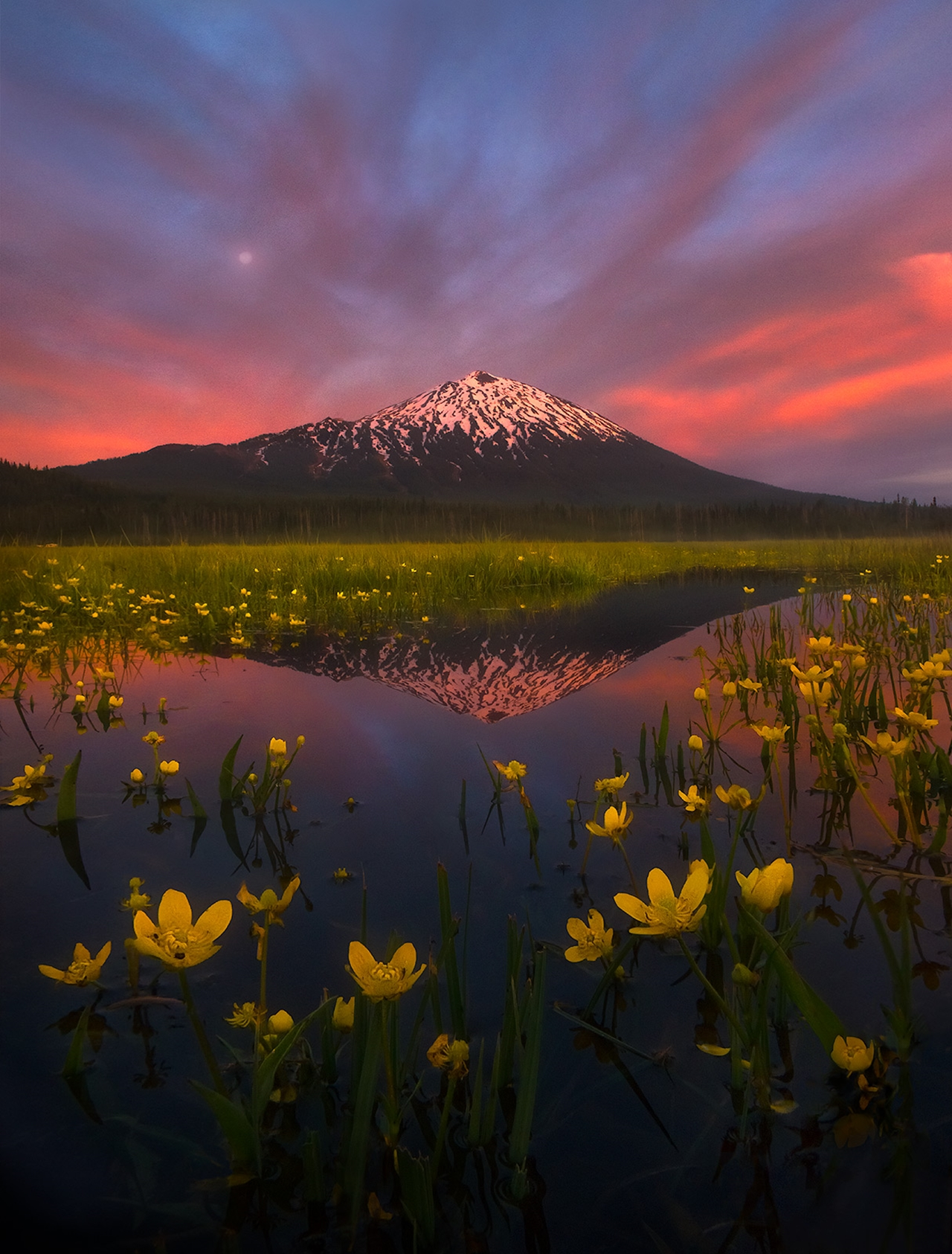 The enchanting scenery of nature in the photographs of Marc Adamus 23