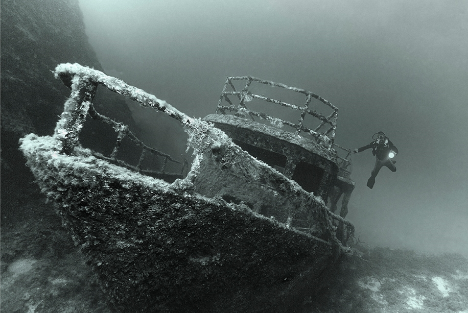 Underwater world photographer Sergey Barkov 06