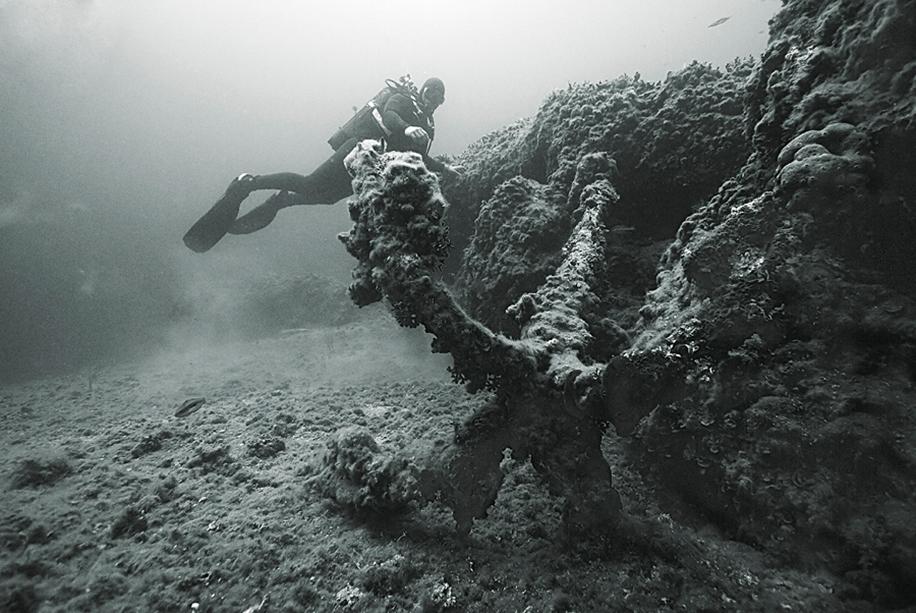Underwater world photographer Sergey Barkov 08
