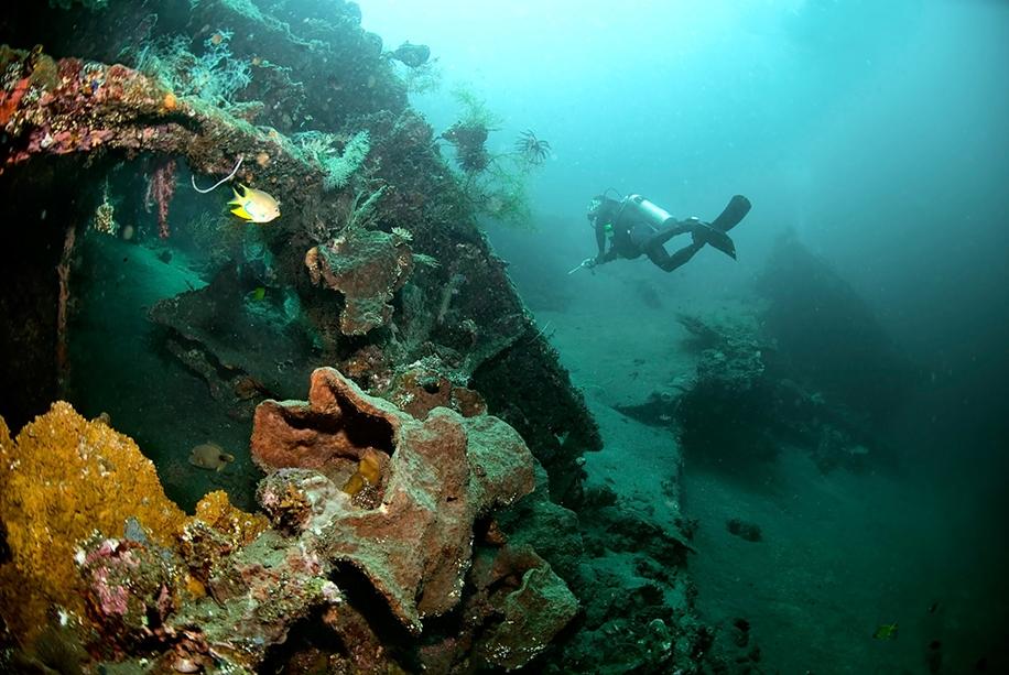 Underwater world photographer Sergey Barkov 21