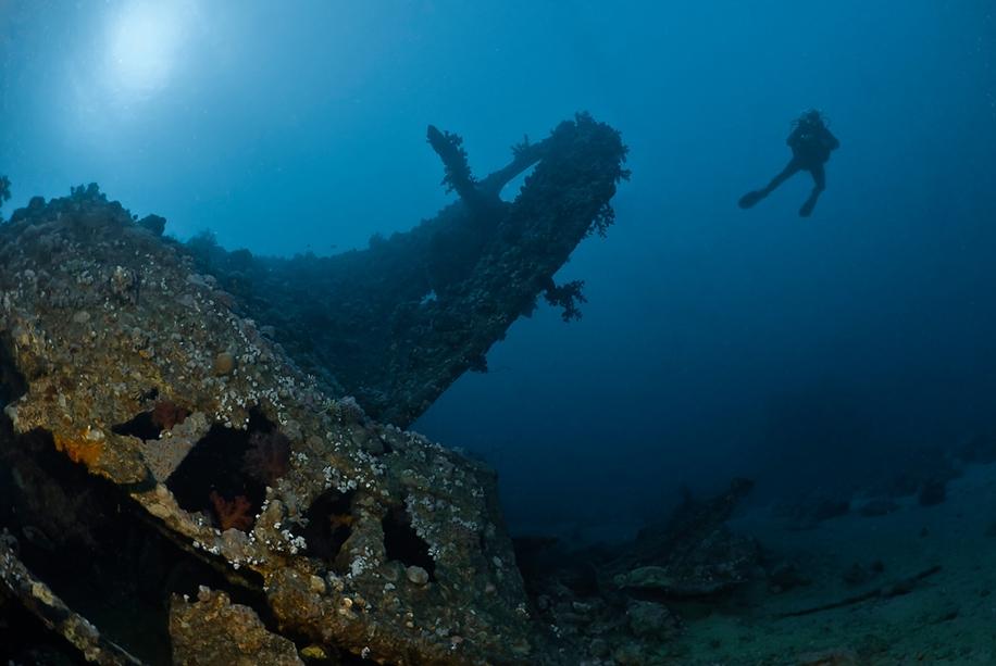 Underwater world photographer Sergey Barkov 35