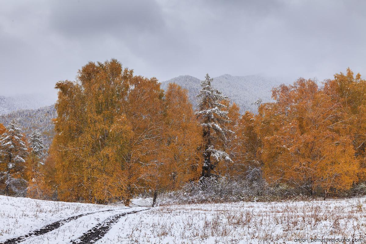 When autumn meets winter 05