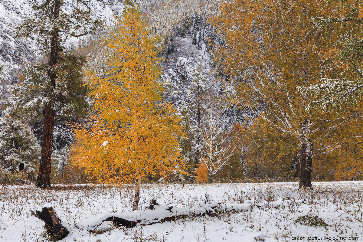 When autumn meets winter 06