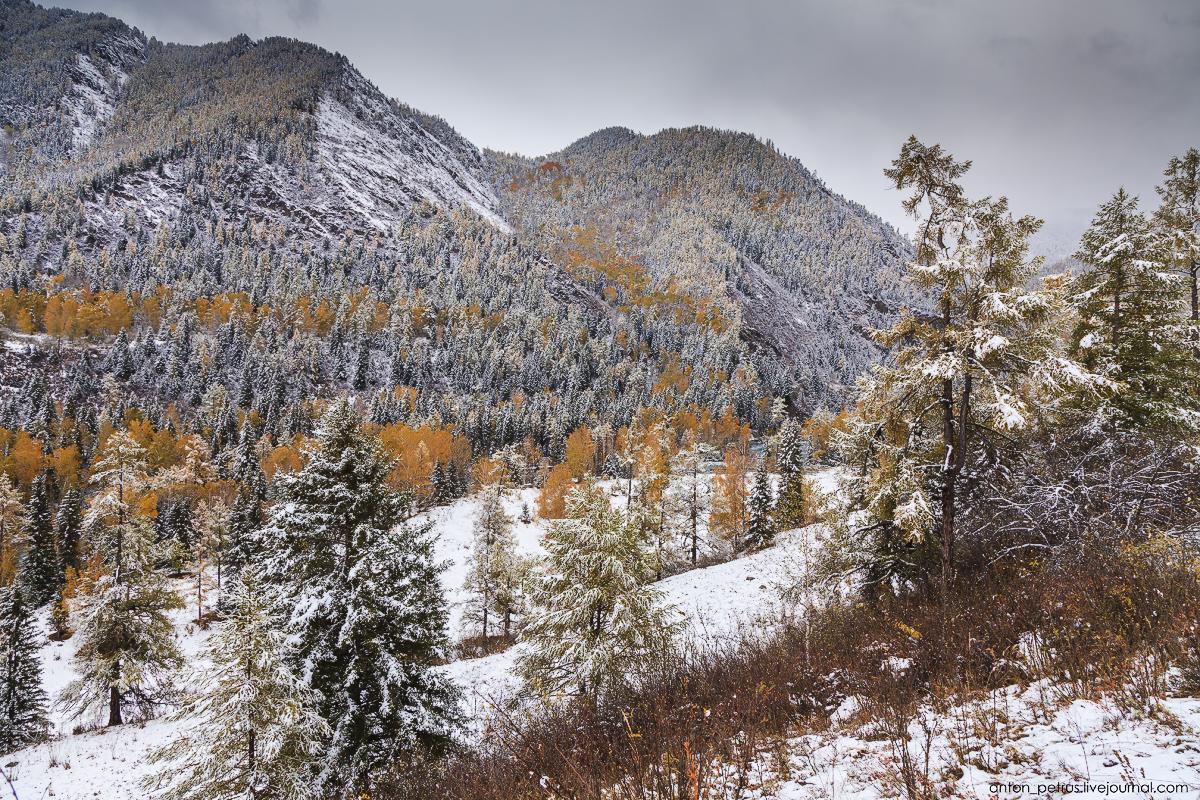 When autumn meets winter 11