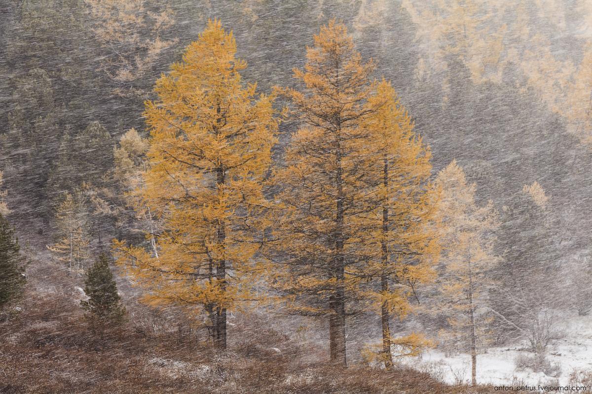 Winter Wonderland in autumn mountains 02