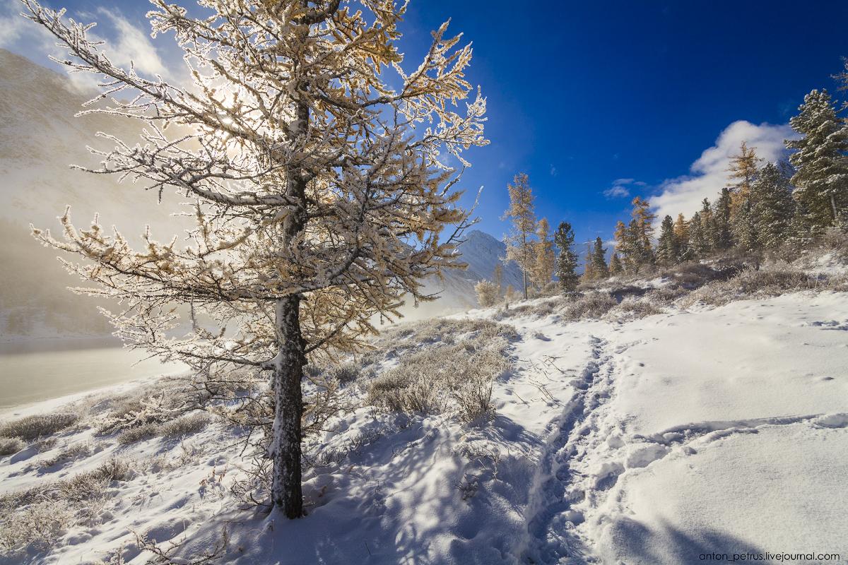 Winter Wonderland in autumn mountains 09