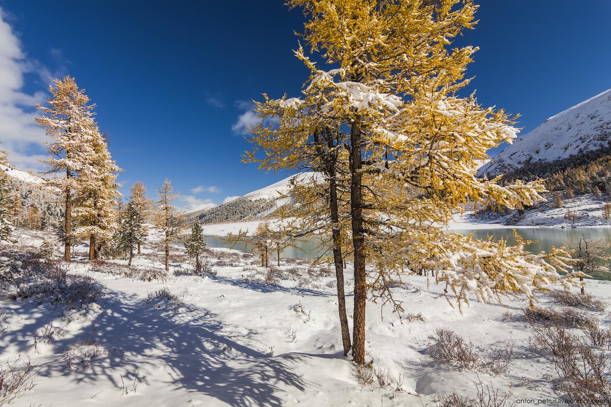 Winter Wonderland in autumn mountains 13