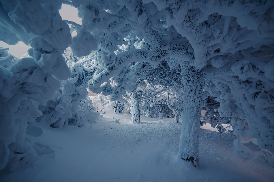 Winter in Pyatigorsk 02
