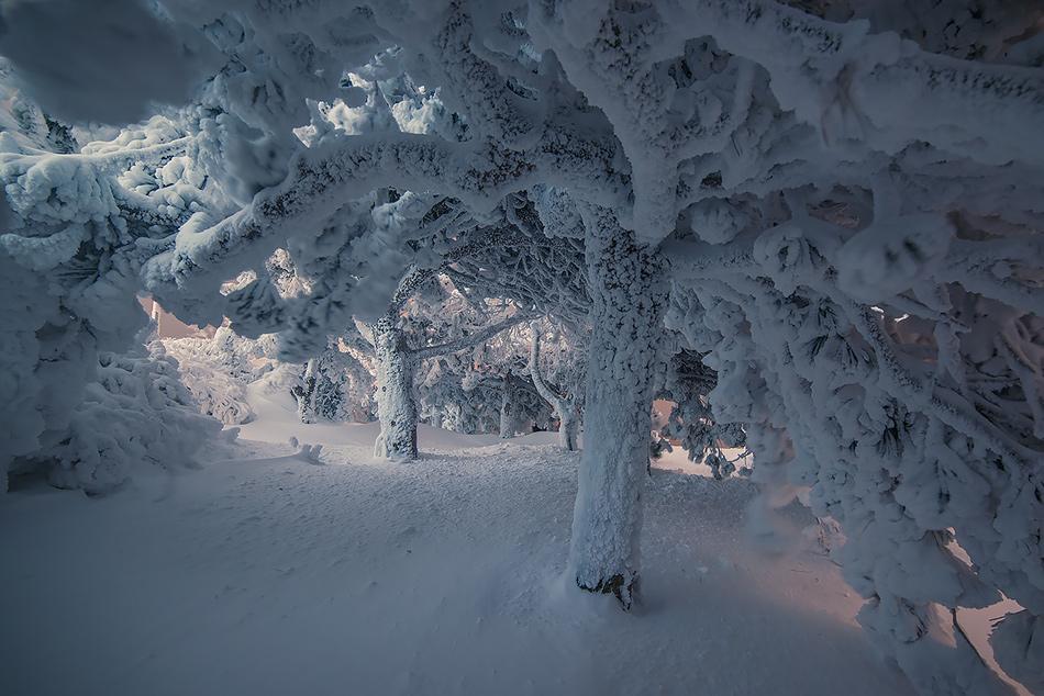 Winter in Pyatigorsk 10
